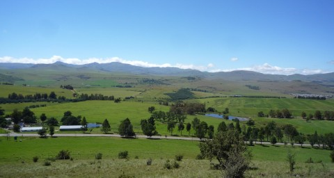 Mountain View Farm, South Africa