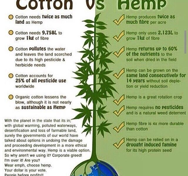 cotton_vs_hemp